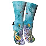 New Tropical and Exotic Coral Reefs Fish School Athletic Tube Stockings Women's Men's Classics Knee High Socks Sport Long Sock One Size