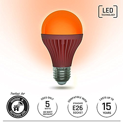 Light Itup LED Light Bulb 5-Watt | Indoor and Outdoor | Energy Efficient 40-Watt Equivalent | Home, Patio, Deck, Party (1 Pack, Orange)