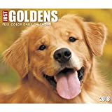 Just Goldens 2018 Daily Desk Boxed Calendar