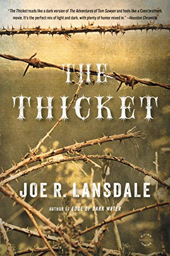 The Thicket by [Lansdale, Joe R.]