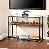 Southern Enterprises Terrarium Display Media Console, Black with Silver Distressed Finish For Sale