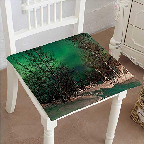 Chair Pads Square Cotton Chair Cushion Snowy Frozen Road Path between Leafless Trees Finland Park Jade Green Brown White Soft Thicken Seat Pads Cushion Pillow for Office,Home or Car 22'x22'x2pcs