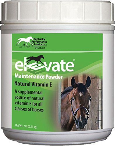 KENTUCKY PERFORMANCE PROD 044097 Elevate Maintenance Powder Supplement For Horses, 2 lb