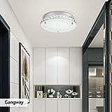 LED Ceiling Light Auffel Minimalist Crystal