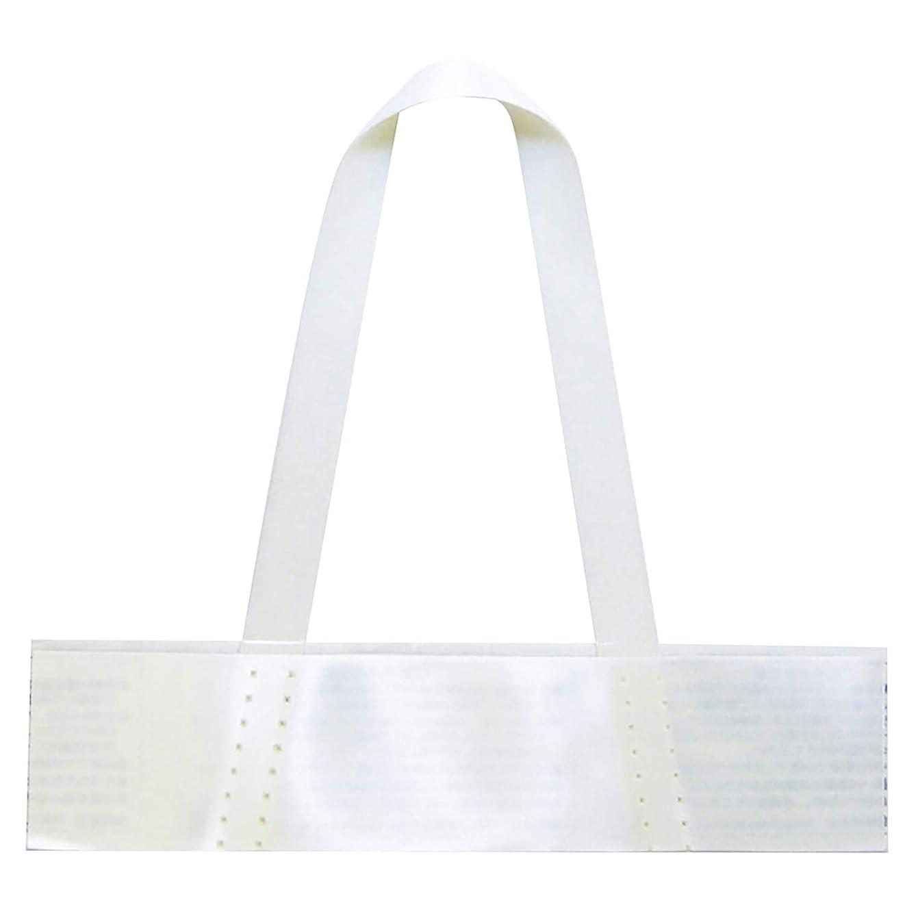 経験観点パンヘイコー 透明 OPP袋 クリスタルパック A5 100枚 S-A5