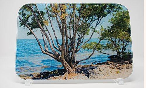 Biscayne Bay Florida Glass Cutting Board - Biscayne Collection
