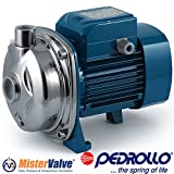 Pedrollo Electric Water Pump AL-RED Stainless steel centrifugal pump - AL-RED 135 115V 1 HP irrigation pumps, washing systems, water supply systems, water treatment plants