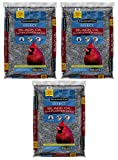 buy Pennington Select Black Oil Sunflower Seed Wild Bird Seed Feed, 40 Lbs (Pack of 3) Made in USA now, new 2019-2018 bestseller, review and Photo, best price $79.16