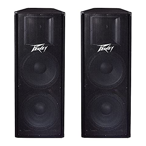 Peavey 2-Way Double 15
