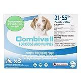 CEVA Animal Health D93150B Combiva II for Large Dogs 21-55 lbs. (3 Pack) Pet Flea Drops