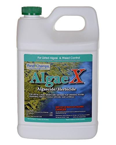 Pond Champs 11700 Algae X 1 Gallon Algaecide/Herbicide ()