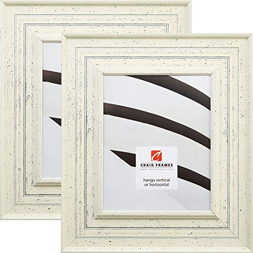 Craig Frames 81378600 24 by 36-Inch Picture Frame 2-Piece Se