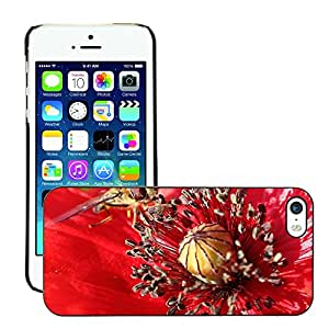 Hot Style Cell Phone PC Hard Case Cover // M00310622 Hoverfly Insect Poppy Klatschmohn // Apple iPhone 5 5S 5G