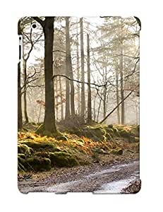Cute High Quality Ipad 2/3/4 Morning Forest Mist Road Autumn Case Provided By Trolleyscribe