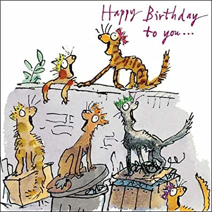 Greetings Card - Quentin Blake - Cats (WDM2742) Happy Birthday to you....