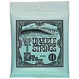 Ernie Ball Ukulele Strings (P02326)