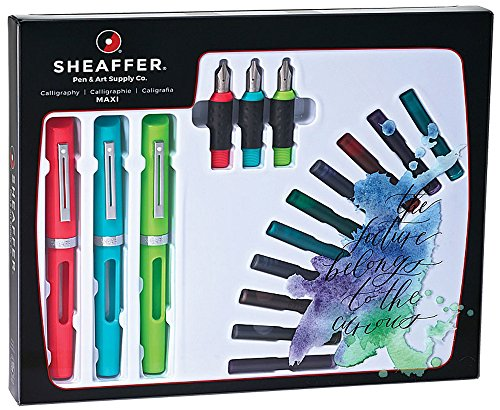 AT Cross Sheaffer Calligraphy Maxi Kit with 3 Viewpoint F...
