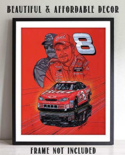 (Dale Earnhardt Jr. & Sr. Shadow