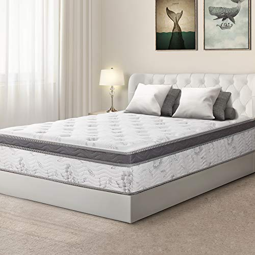 - Olee Sleep 12 inch Hybrid Euro Box Top Pocket Spring Mattress (King)