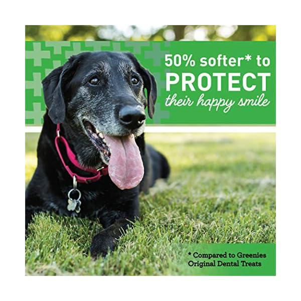 GREENIES Senior Aging Care Natural Dental Dog Treats, 27 oz. Pack