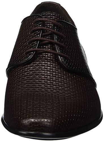 Lloyd Olcar, Zapatos de Cordones Derby para Hombre Braun (T.D.MORO/ESPRESSO)