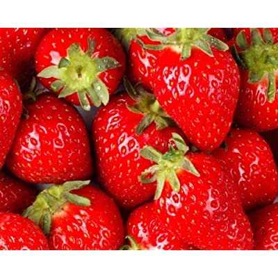 STRAWBERRIES GROWN FRESH PRODUCE FRUIT VEGETABLES PER POUND by FRESH STRAWBERRIES At The Neighborhood Corner Store: Grocery & Gourmet Food