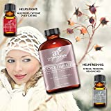 Art-Naturals-Rosehip-Seed-Oil-3-Piece-Set-Pure-Virgin-Cold-Pressed-Unrefined-4oz-Best-Natural-moisturizer-to-heal-Dry-Skin-Fine-Lines-Scars