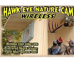 Birdhouse Spy Cam BCAMHEW Hawk-Eye Wireless Spy Camera (Set of 1)