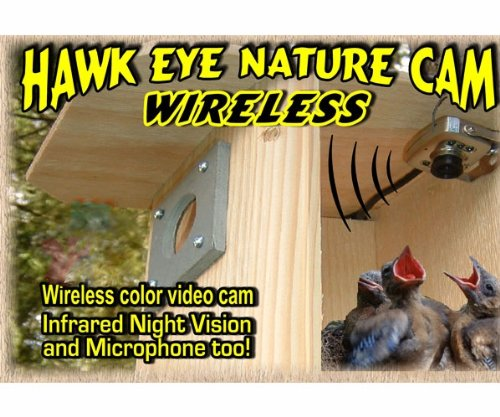Birdhouse Spy Cam BCAMHEW Hawk-Eye Wireless Spy Camera (Set of - Watching Camera Bird