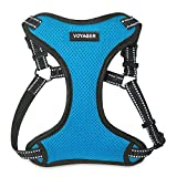 Voyager Step-in Flex Dog Harness - All Weather Mesh, Step in Adjustable Harness for Small and Medium Dogs by Best Pet Supplies - Turquoise, Large
