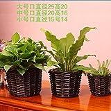 Creative Rattan Flower Basket hand-woven simple flowerpot living room decorations,25x20cm