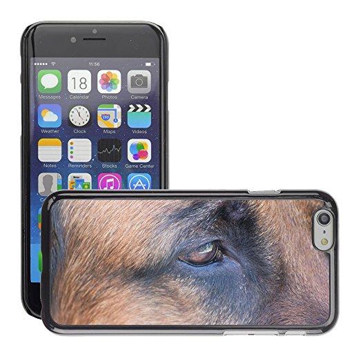 "Just Phone Cases Hard plastica indietro Case Custodie Cover pelle protettiva Per // M00127975 Dog Dog Schäfer Vue Yeux // Apple iPhone 6 PLUS 5.5"""
