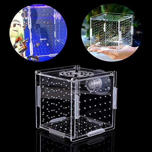Amrka Fish Breeding Box Aquarium Isolation Box Fish Hatchery Breeder  Incubator Transparent Acrylic Box