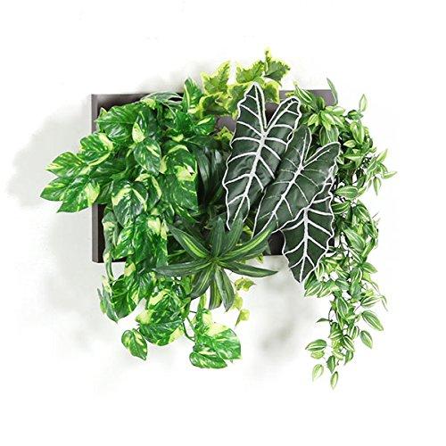 arne 光触媒 人工観葉植物 壁掛け フェイクグリーン 観葉植物 インテリア 壁掛 インテリアグリーン フェイク ウォールグリーン フレーム Botanical c.class 10 ダークブラウン B01M0G2ZXL No.10|ダークブラウン ダークブラウン No.10