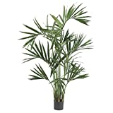 GHP 6-Feet Kentia Palm Silk Natural Looking Tropical Artificial Tree Plants