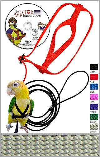The AVIATOR Pet Bird Harness and Leash: Large Silver by The AVIATOR