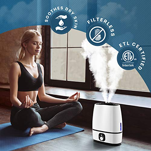 Humidifier helps with allergies, clearing sinuses and coughs
