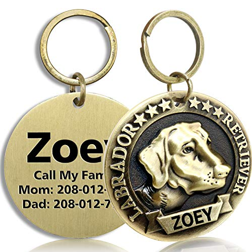 FunTags Bronze Breeds Customized Dog Head 3D Effect Dog ID Tag,High-Relief Copper Dog Tag,Personalized Stainless Steel Front&Back Laser Engraving Dog Name Tag,Labrador Retriever Tag