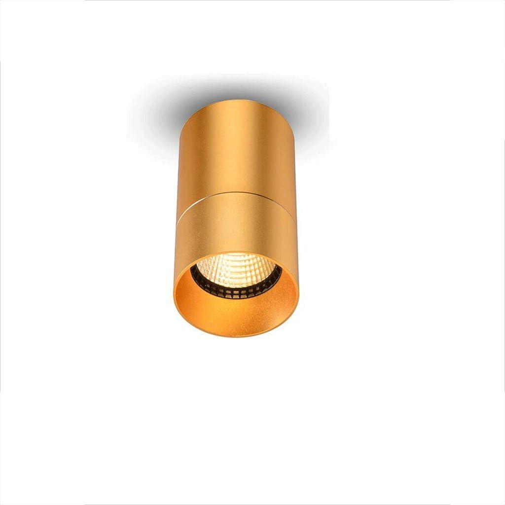 GUOYUN LED Outfit Downlight Techo-Libre 8W condensador Corredor telón de fondo