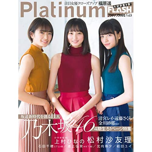Platinum FLASH Vol.8 表紙画像