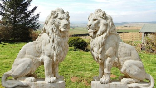 Pair Of Giant Stone Cast Sitting Lions 1.35m High, White Stone, Garden  Ornaments