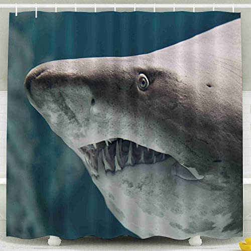 Tooperue Shower Curtain for Bathroom with Hooks Shark Fish 78×72 Inch,Eco-Friendly,No Oder,Waterproof,Yellow Orange