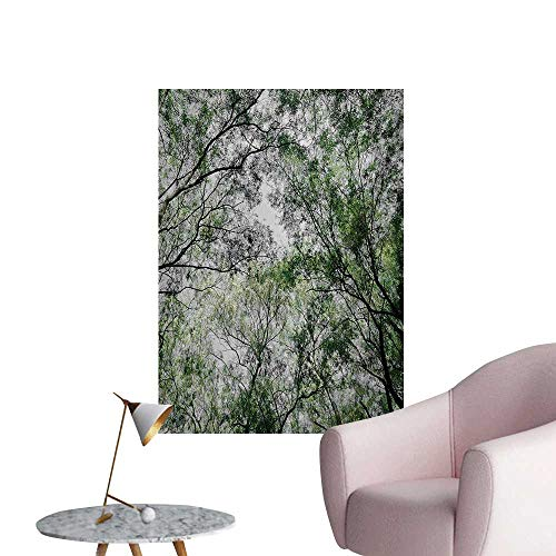 Anzhutwelve Nature Wall Sticker Decals Tree Branch in Spring Season Fairy Jungle Growth Nature Look Up Wood Scene Photo PrintGreen W20 xL28 Wall -