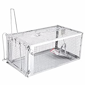 AB Traps Pro-Quality Live Animal Humane Trap Catch and Release Rats Mouse Mice Rodents Squirrels and Similar Sized Pests - Safe and Effective - Medium
