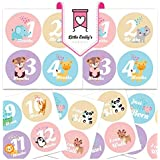 Baby Girl Monthly Milestone Stickers - Best First Year...