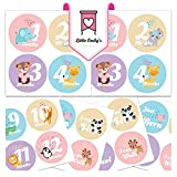 Baby Girl Monthly Milestone Stickers - Best First