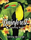 Rainforest Coloring Book: An Adult Coloring Book