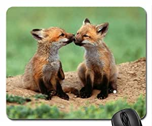 Baby Foxes Mouse Pad, Mousepad