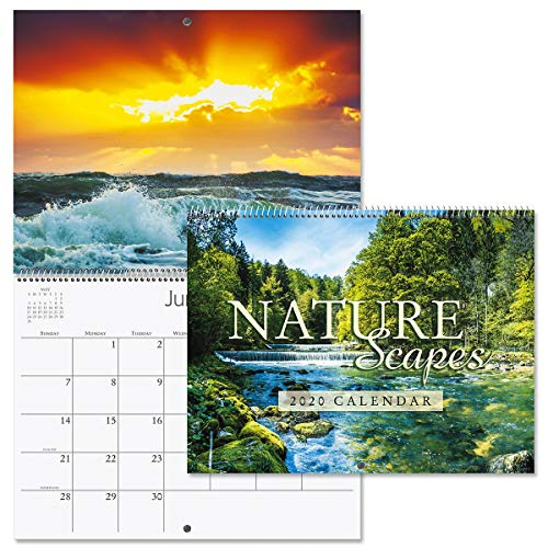 2020 Naturescapes Wall Calendar- 12