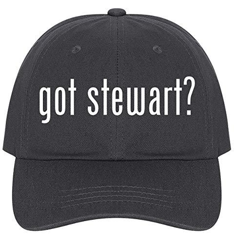 (The Town Butler got Stewart? - A Nice Comfortable Adjustable Dad Hat Cap, Dark Grey)